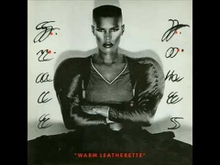WARM LEATHERETTE (SPECIAL EDITION)